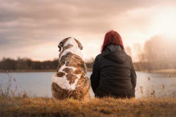 Warum Hund gut für die Gesundheit sind