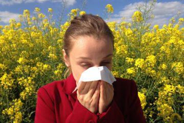 Allergieauslöser